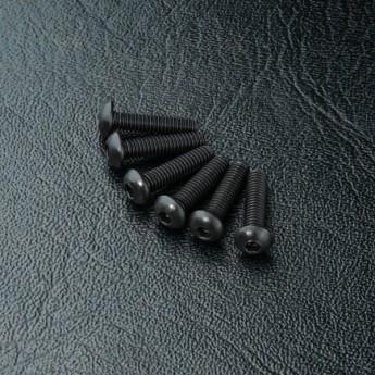 Round head screw M2.5X10 (6)